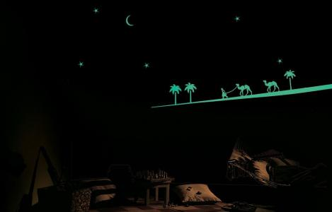 ColourDrive-Asian Paints Desert Safari - Night View