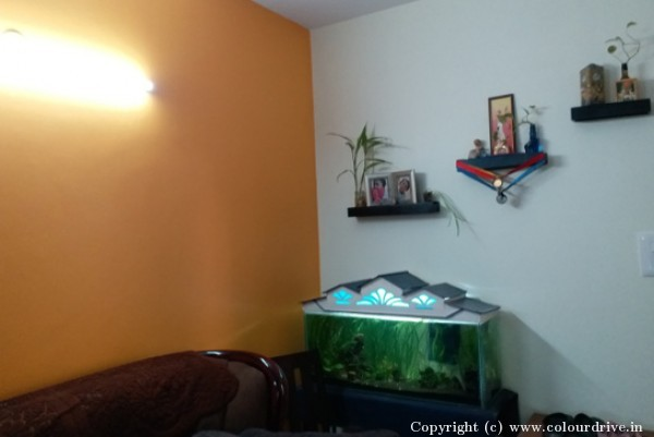 Interior-Enamel-at-Vanshee-Eldorado-Apartment-in-Marathahalli-101.jpg