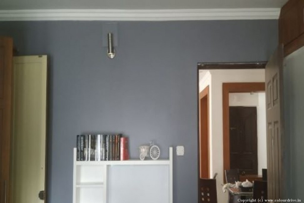 Interior Home Painting Project at Tulip Apartment,  Vasantha Valley, Whitefield road , Kondapur, Hyderabad