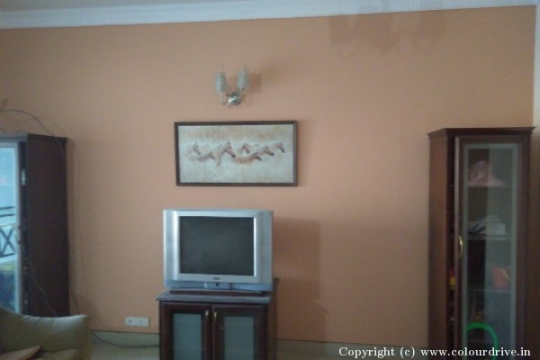 Interior-at-Mantri-Elite-Apartment-in-Dollar-Layout-JP-Nagar-78.jpg