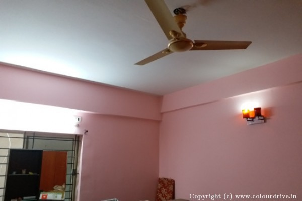 Interior-at-DSR-Green-Vista-Apartment-in-ITPL-Whitefield-86.jpg